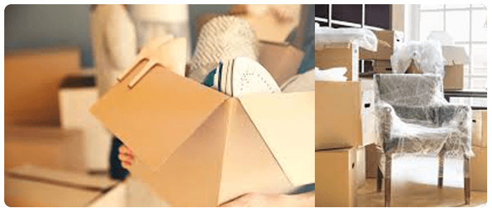 Can Professional Packers And Movers Help You To Move?